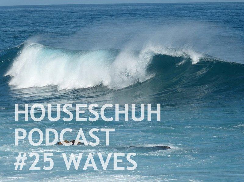 HSP25 Karneval-Lieblingslieder, Faschingsmuffel und Chart-Einflüsse von Mr. Probz und Robin Schulz mit Waves