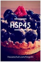 HSP45 Geburtstags-Houseschuh mit Songs von Anja Schneider, Todd Terry, Jamie Lewis und Krankbrother
